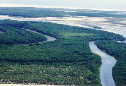 Clique aqui Delta do rio Parnaíba
