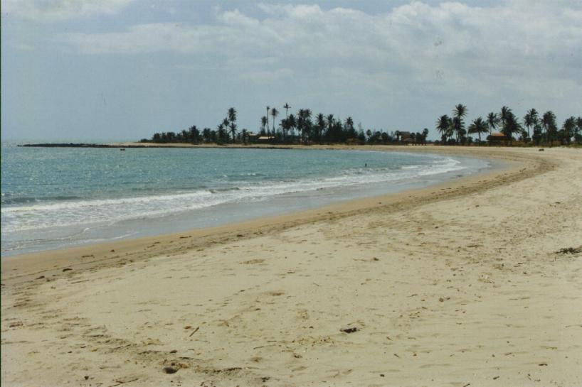Clique aqui praia do Cajueiro da Praia